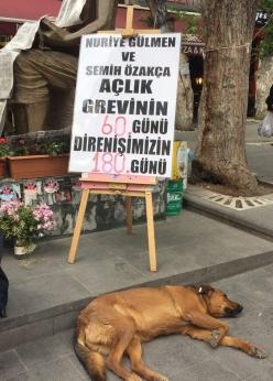 20170507_Nuriye&Semih'eDestekEylemi@Ankara_04a